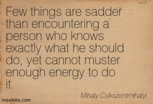Quotation-Mihaly-Csikszentmihalyi-inspirational-Meetville-Quotes-123180